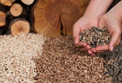 Facharbeiter_in_Biomasseproduktion_106185800 Lehrberuf