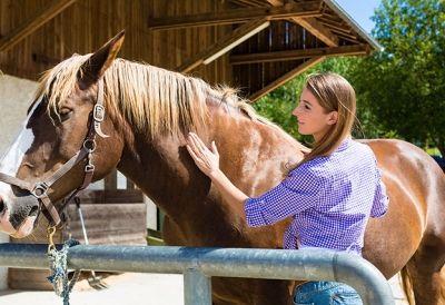 Facharbeiter_in_Pferdewirtschaft_116947096 - FacharbeiterIn Pferdewirtschaft